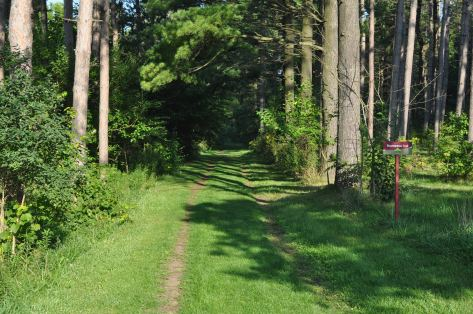 Hiking Trail in Brant County