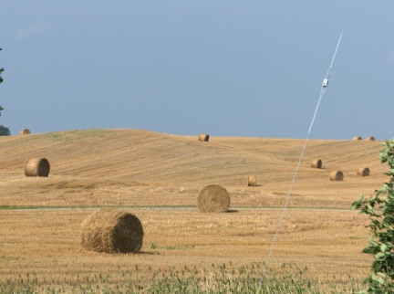 Hay Field in Brant County