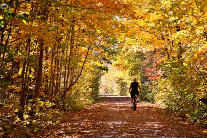 Brant County trails in autumn