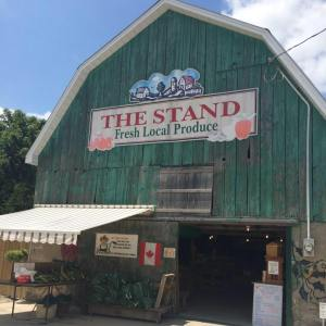 The Stand Product Marketing in Burford, Ontario